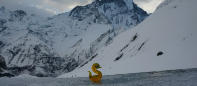 The Duck That Liked to Trek